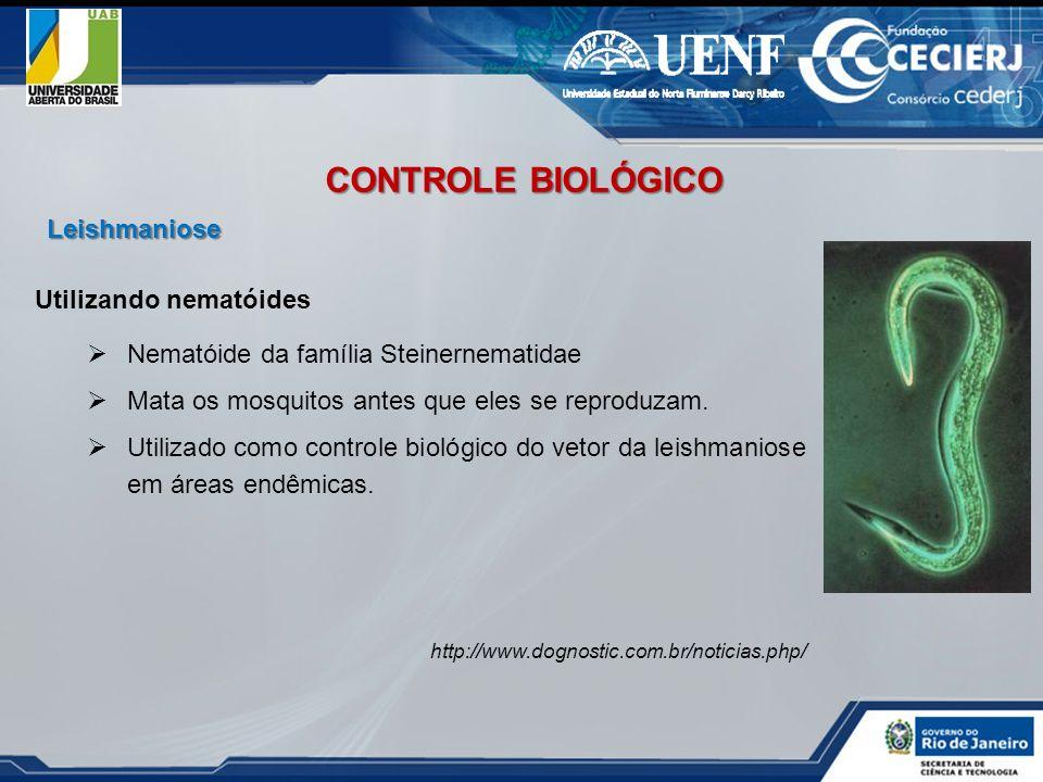 CONTROLE BIOLÓGICO Leishmaniose Utilizando nematóides