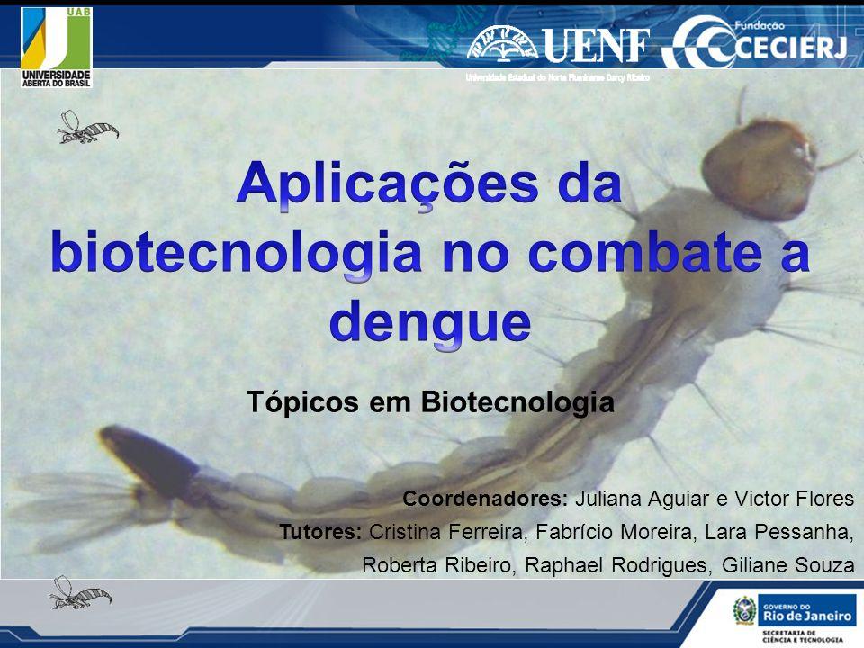 Aplicações da biotecnologia no combate a dengue