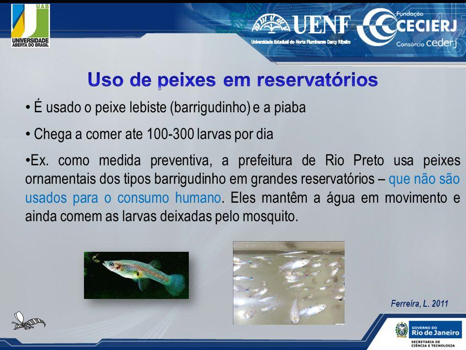 Uso de peixes em reservatórios