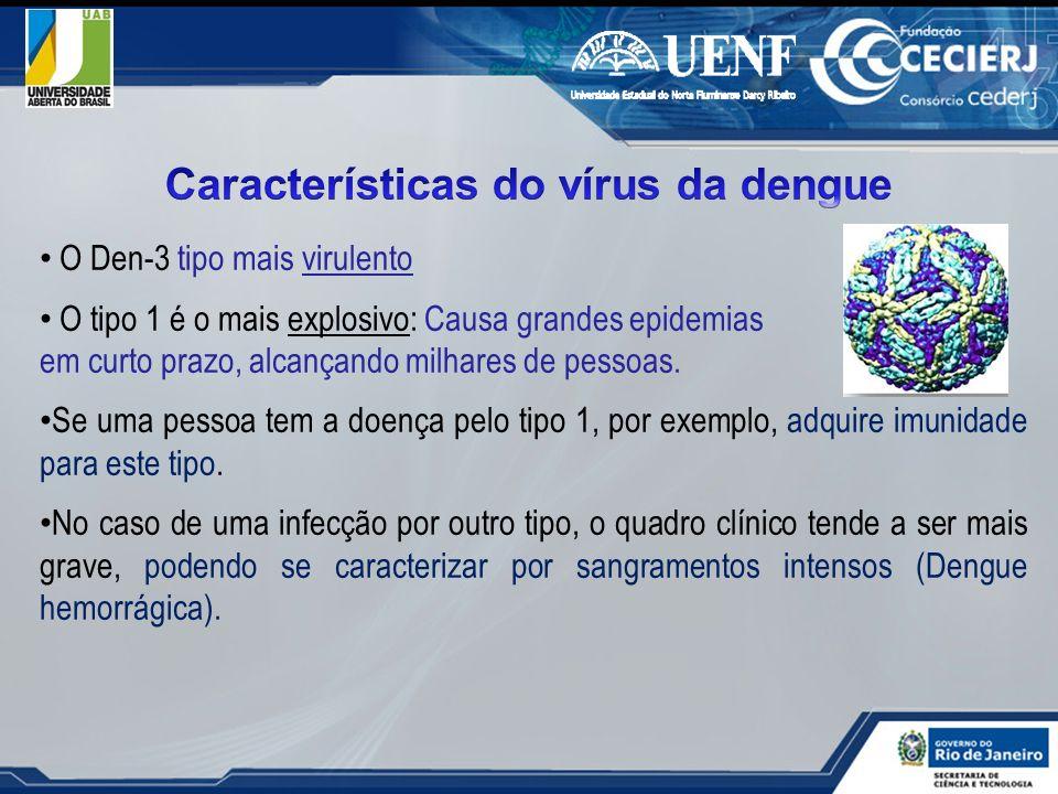 Características do vírus da dengue
