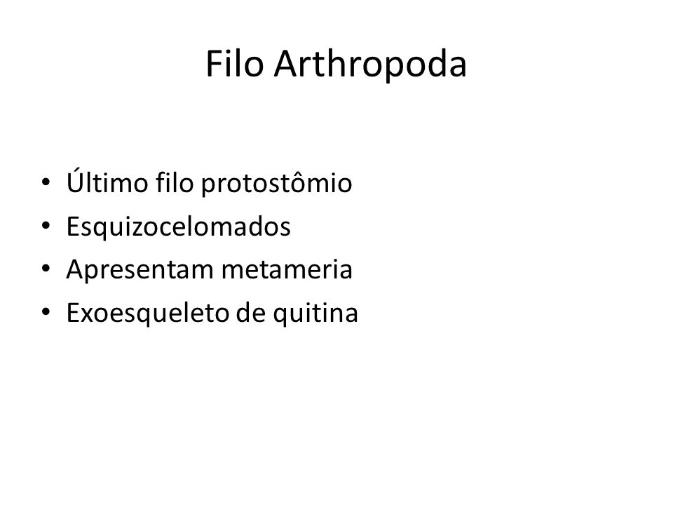 Filo Arthropoda Último filo protostômio Esquizocelomados