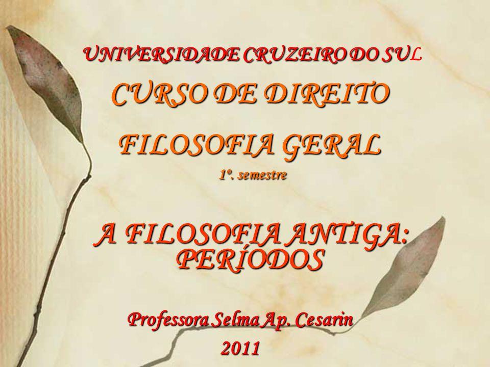 Professora Selma Ap. Cesarin 2011