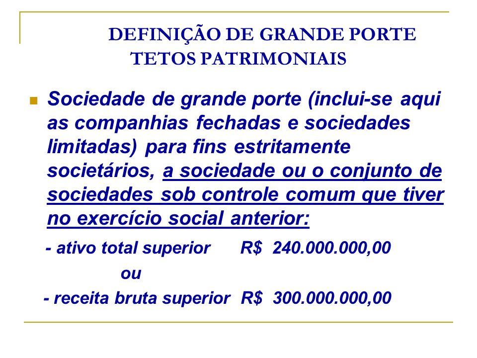 DEFINIÇÃO DE GRANDE PORTE TETOS PATRIMONIAIS