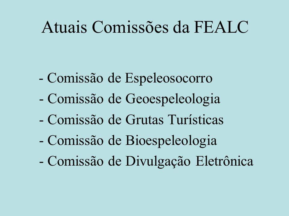 Atuais Comissões da FEALC