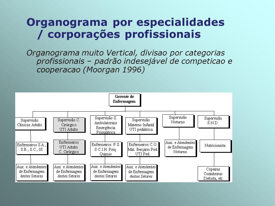 Organograma por especialidades / corporações profissionais