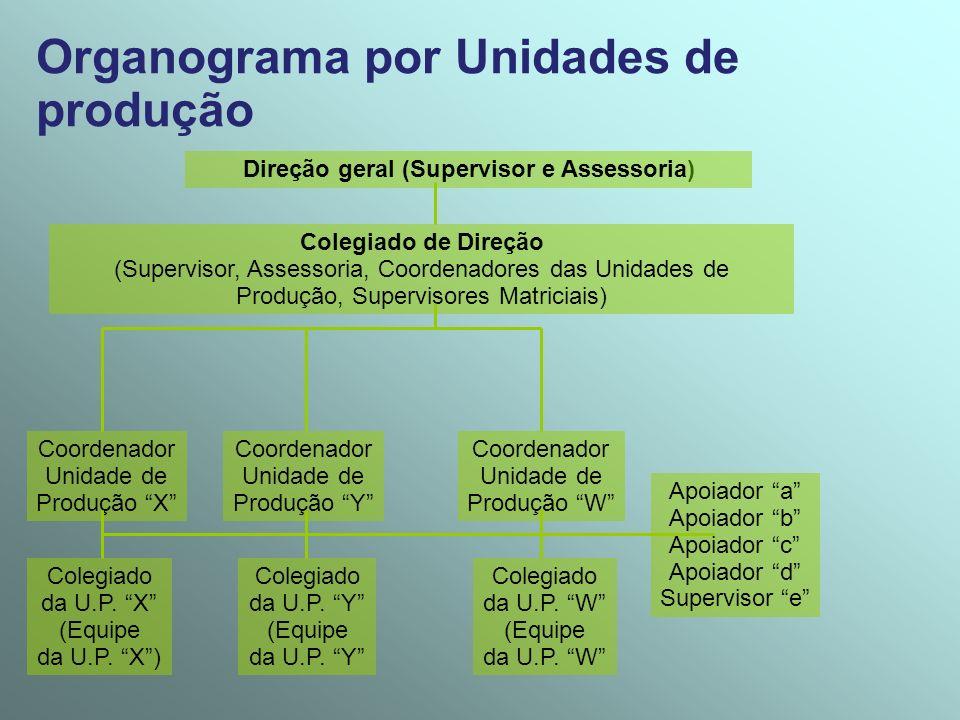 Direção geral (Supervisor e Assessoria)