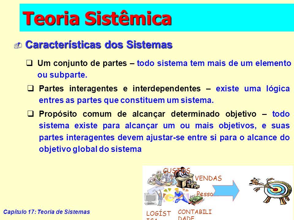 Teoria Sistêmica Características dos Sistemas