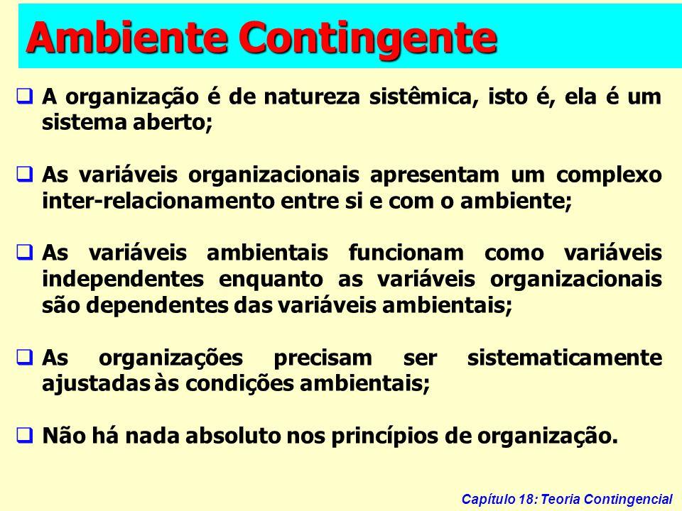 Ambiente Contingente A organização é de natureza sistêmica, isto é, ela é um sistema aberto;