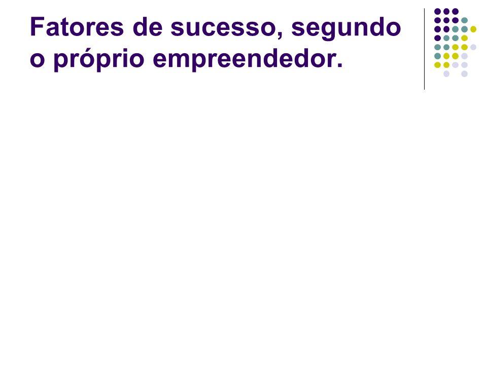 Fatores de sucesso, segundo o próprio empreendedor.