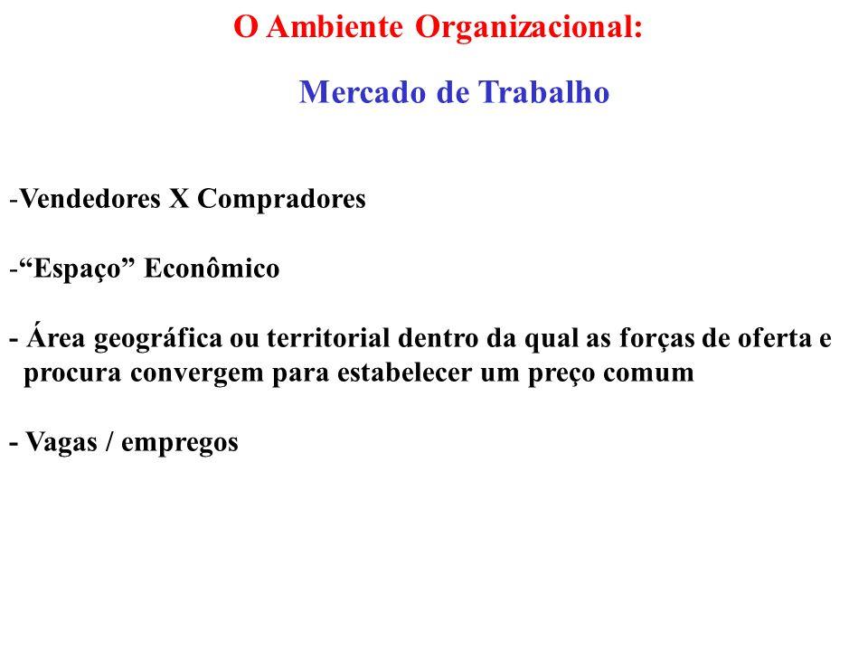 O Ambiente Organizacional:
