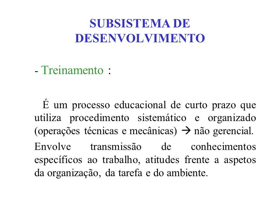 SUBSISTEMA DE DESENVOLVIMENTO