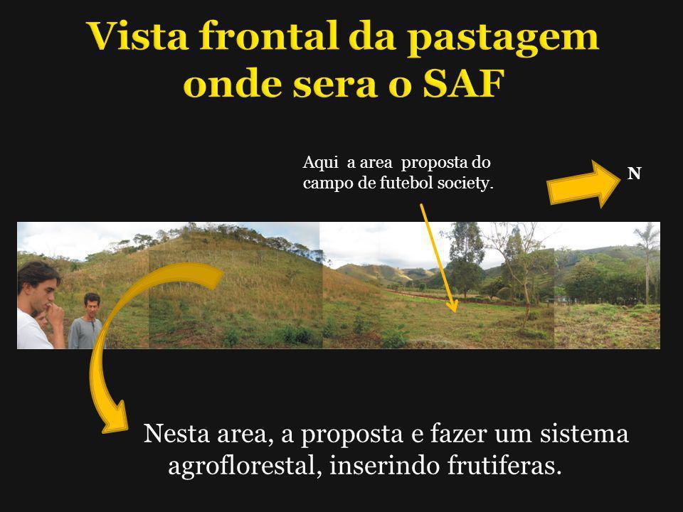 Vista frontal da pastagem onde sera o SAF