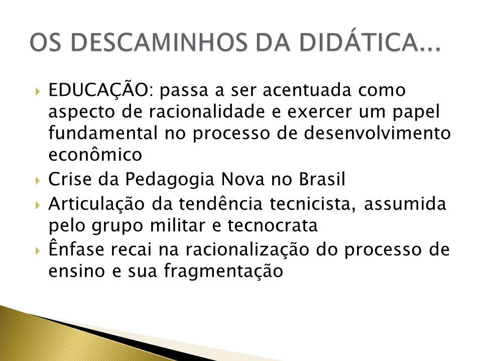 OS DESCAMINHOS DA DIDÁTICA...