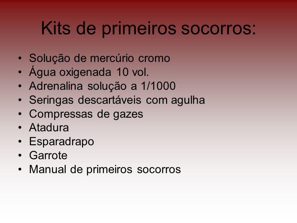 Kits de primeiros socorros: