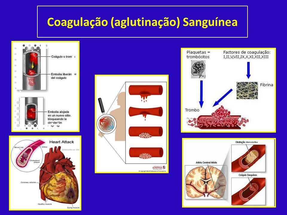 Coagulação (aglutinação) Sanguínea