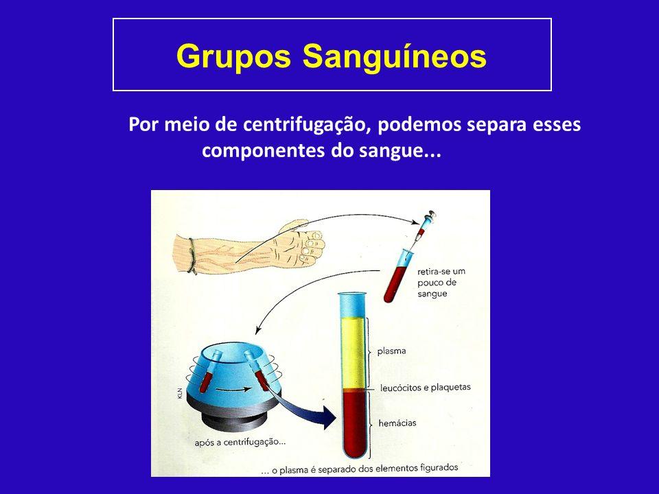 Grupos Sanguíneos Por meio de centrifugação, podemos separa esses componentes do sangue...