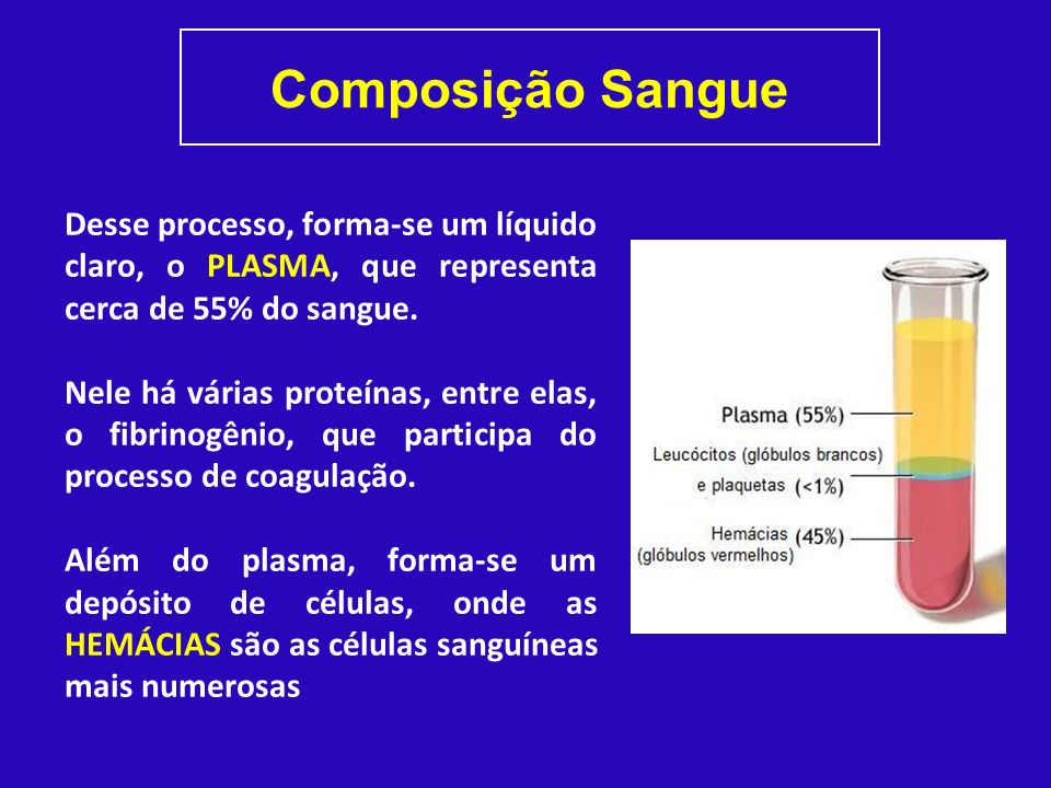 Composição Sangue Desse processo, forma-se um líquido claro, o PLASMA, que representa cerca de 55% do sangue.