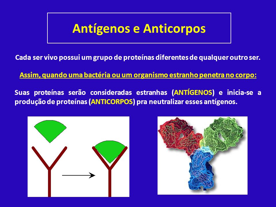 Antígenos e Anticorpos