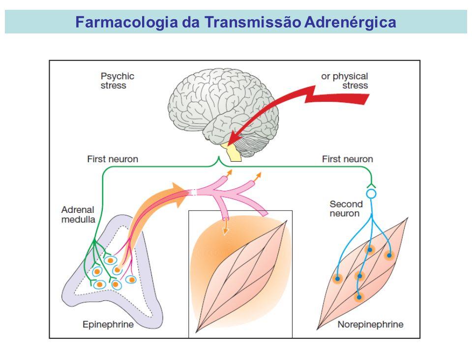 Farmacologia da Transmissão Adrenérgica