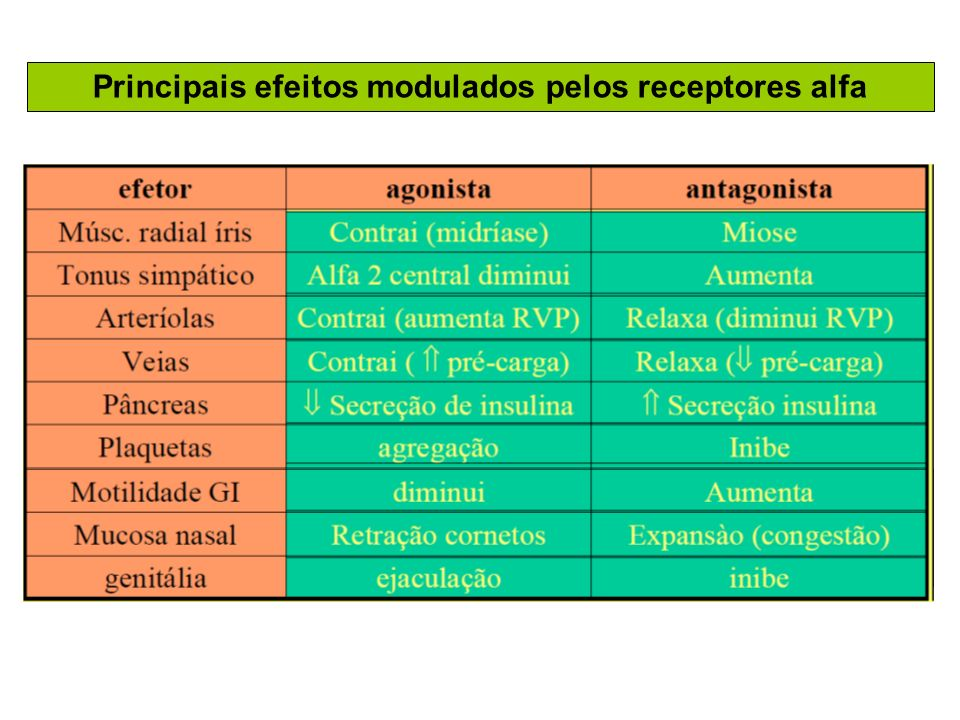 Principais efeitos modulados pelos receptores alfa