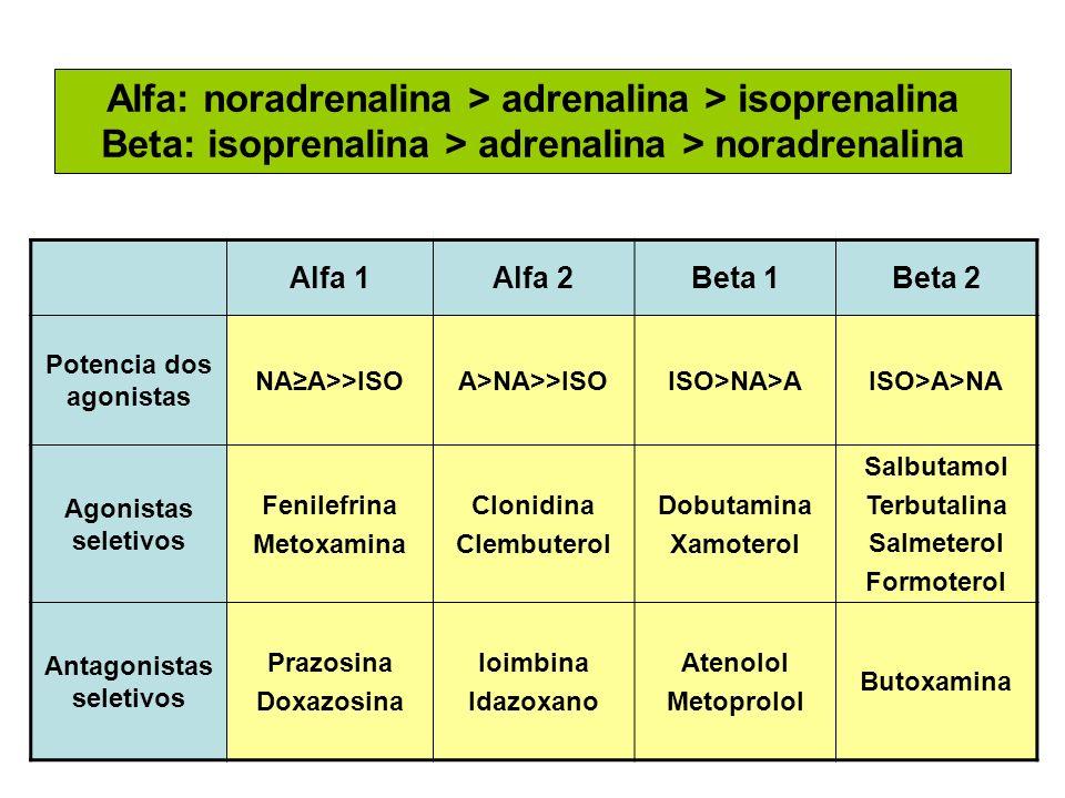 Alfa: noradrenalina > adrenalina > isoprenalina