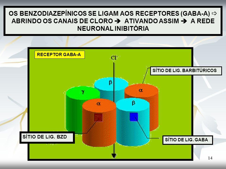 OS BENZODIAZEPÍNICOS SE LIGAM AOS RECEPTORES (GABA-A)  ABRINDO OS CANAIS DE CLORO  ATIVANDO ASSIM  A REDE NEURONAL INIBITÓRIA
