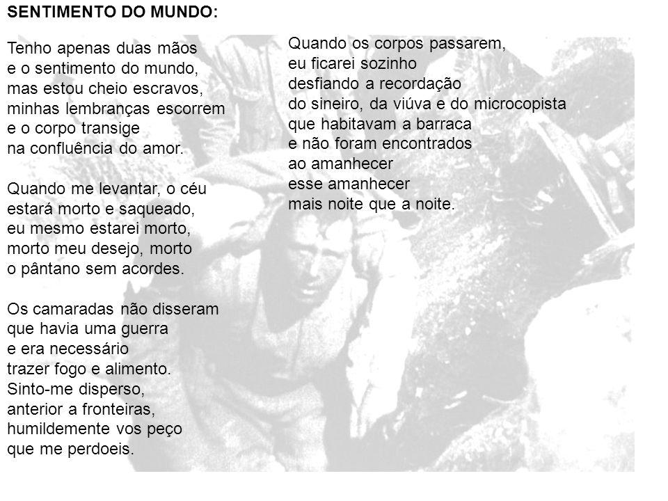 SENTIMENTO DO MUNDO: