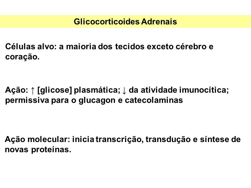 Glicocorticoides Adrenais