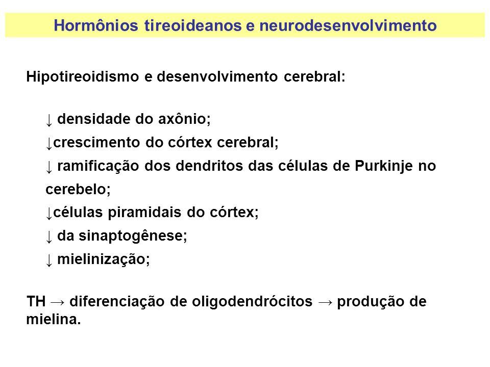 Hormônios tireoideanos e neurodesenvolvimento