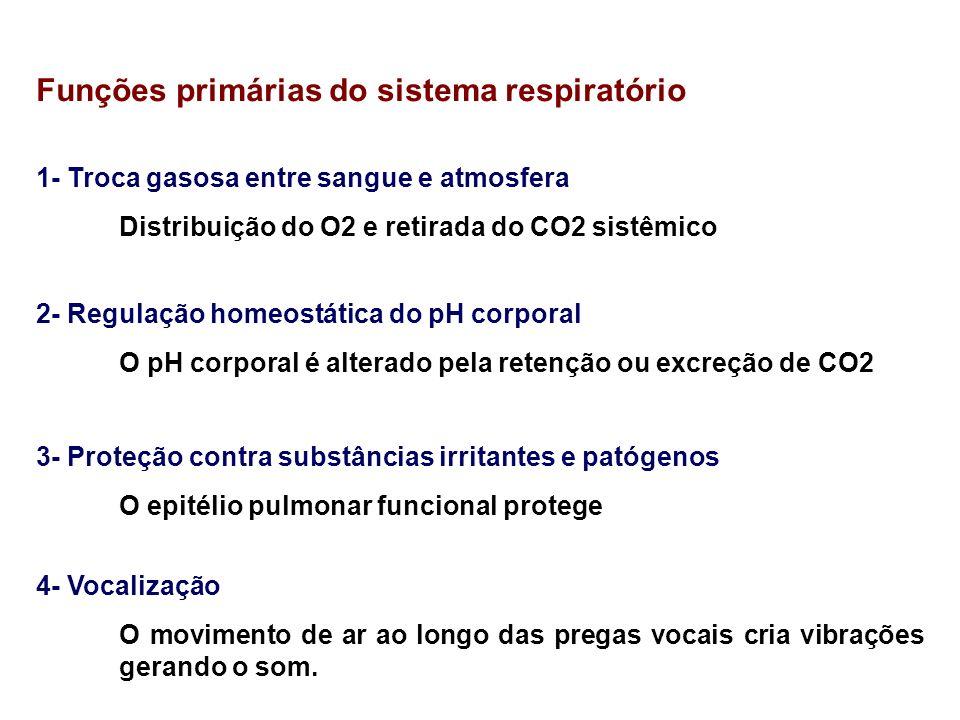 Funções primárias do sistema respiratório