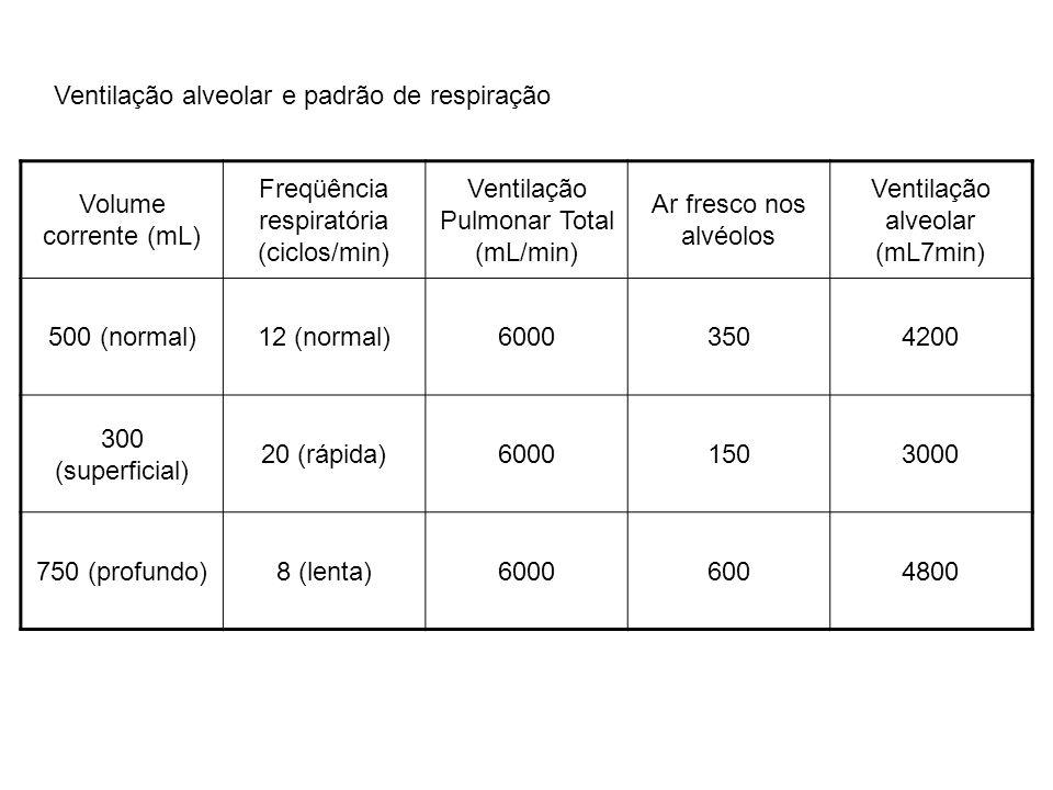 Ventilação alveolar e padrão de respiração Volume corrente (mL)