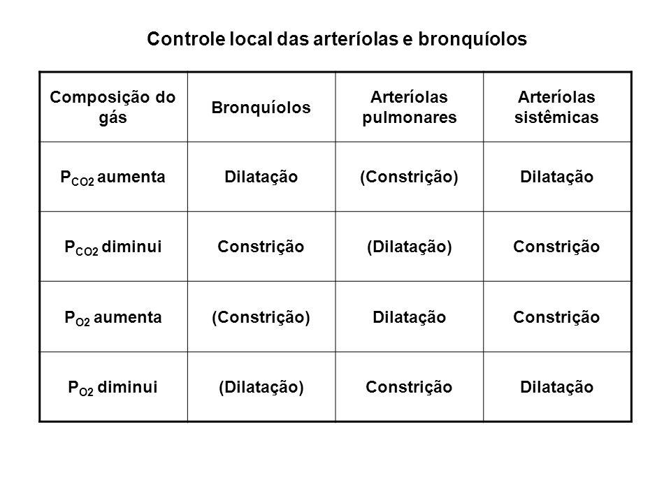 Arteríolas pulmonares Arteríolas sistêmicas