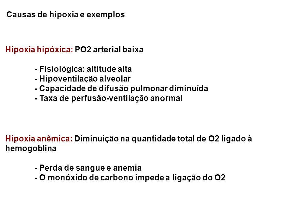 Causas de hipoxia e exemplos