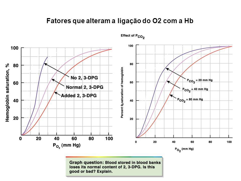 Fatores que alteram a ligação do O2 com a Hb