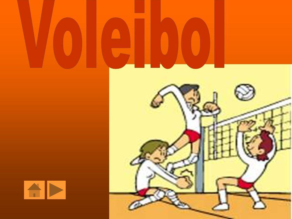 Voleibol Voleibol