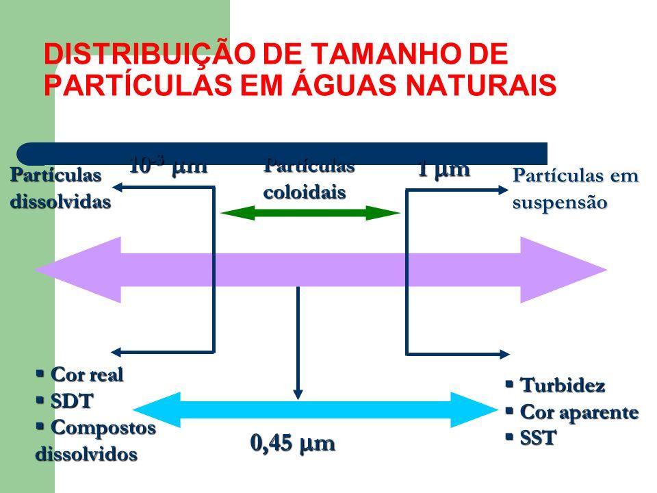 DISTRIBUIÇÃO DE TAMANHO DE PARTÍCULAS EM ÁGUAS NATURAIS