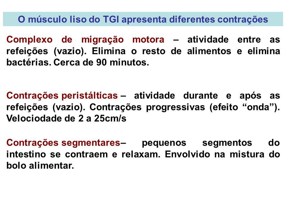 O músculo liso do TGI apresenta diferentes contrações