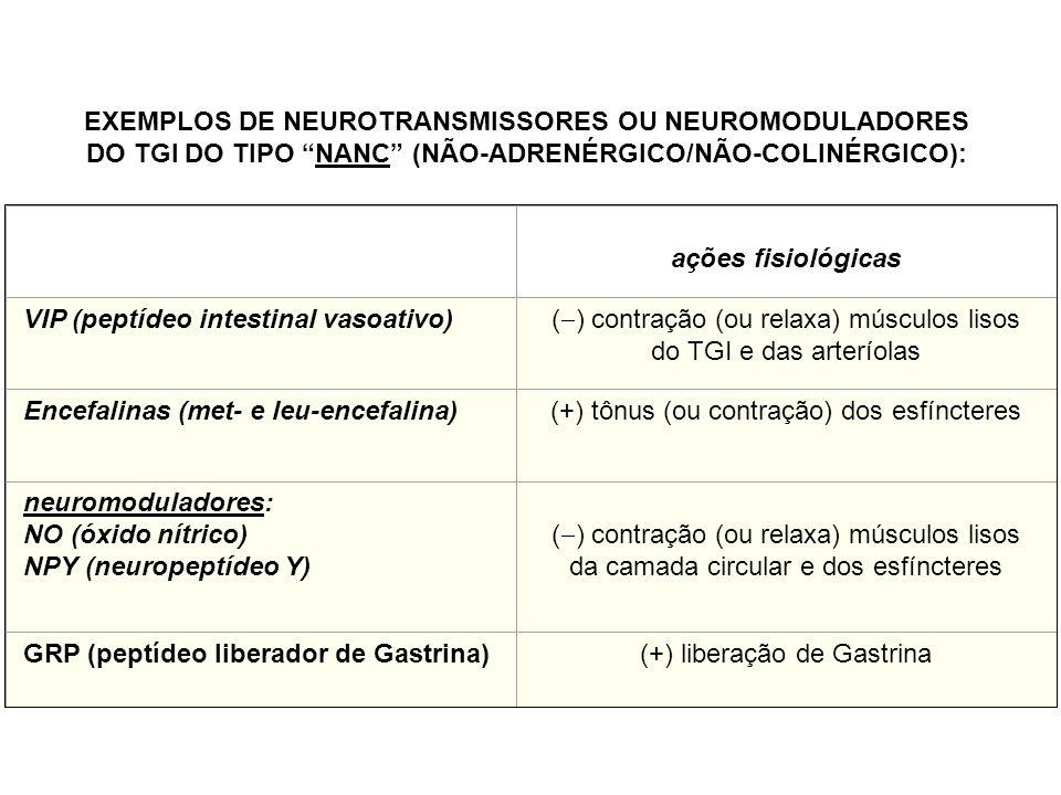 EXEMPLOS DE NEUROTRANSMISSORES OU NEUROMODULADORES