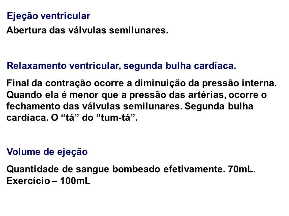 Ejeção ventricular Abertura das válvulas semilunares. Relaxamento ventricular, segunda bulha cardíaca.