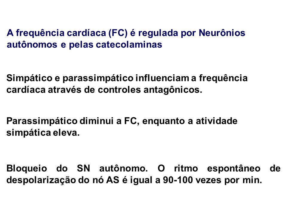 A frequência cardíaca (FC) é regulada por Neurônios autônomos e pelas catecolaminas