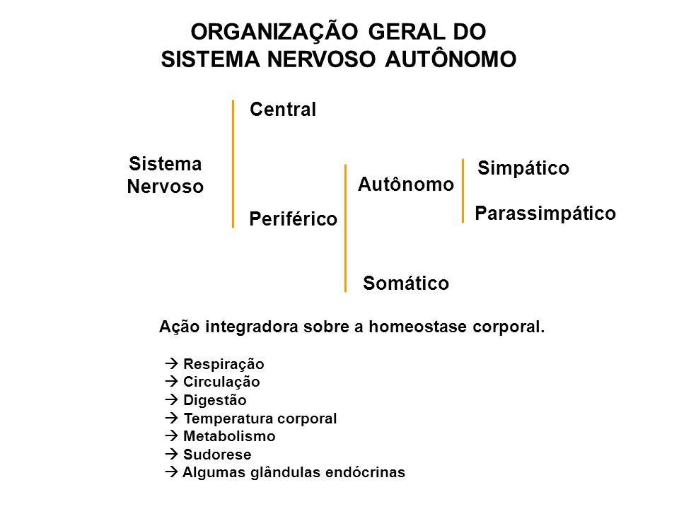 ORGANIZAÇÃO GERAL DO SISTEMA NERVOSO AUTÔNOMO