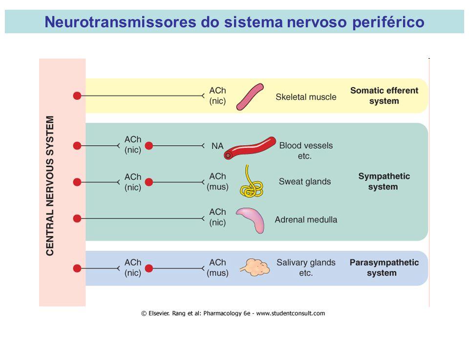 Neurotransmissores do sistema nervoso periférico