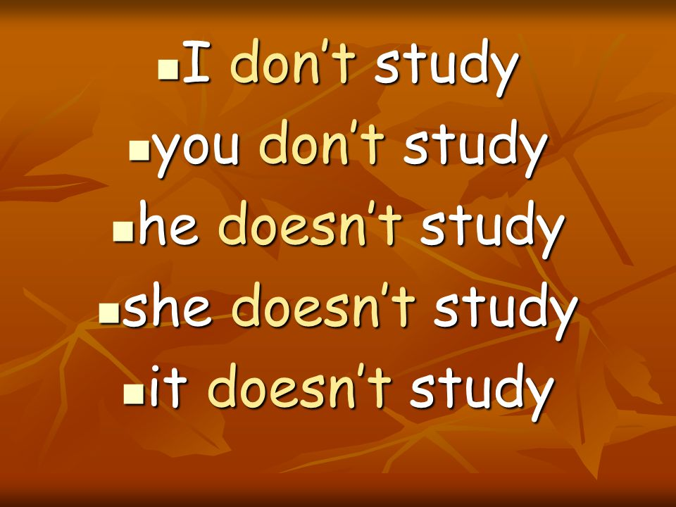 I don't study you don't study he doesn't study she doesn't study it doesn't study
