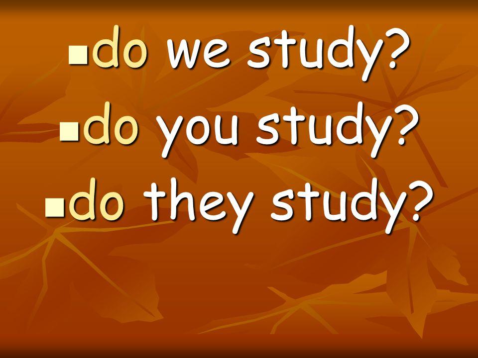 do we study do you study do they study