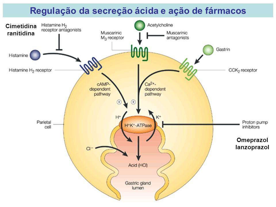 Regulação da secreção ácida e ação de fármacos