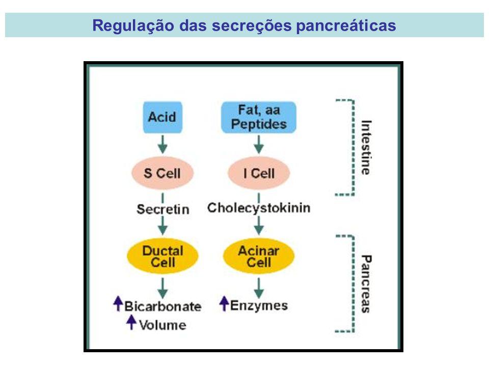 Regulação das secreções pancreáticas