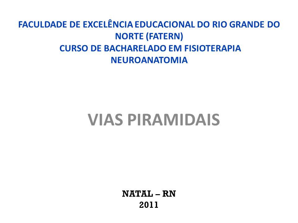 FACULDADE DE EXCELÊNCIA EDUCACIONAL DO RIO GRANDE DO NORTE (FATERN) CURSO DE BACHARELADO EM FISIOTERAPIA NEUROANATOMIA