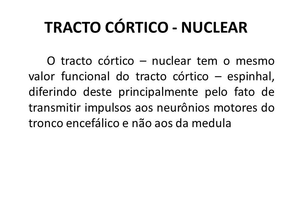 TRACTO CÓRTICO - NUCLEAR