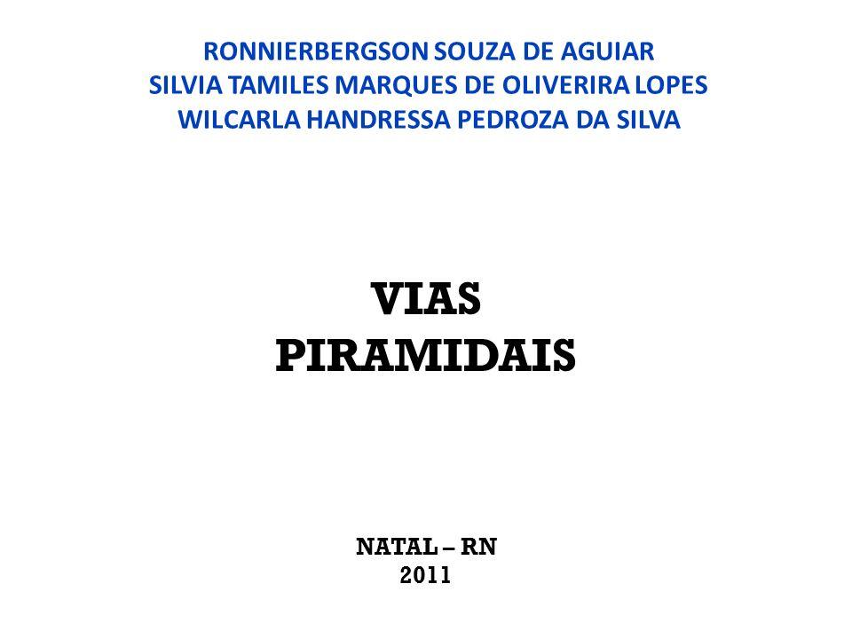 RONNIERBERGSON SOUZA DE AGUIAR SILVIA TAMILES MARQUES DE OLIVERIRA LOPES WILCARLA HANDRESSA PEDROZA DA SILVA