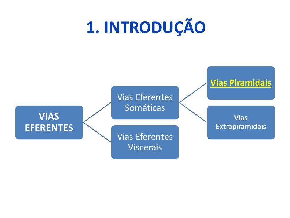 1. INTRODUÇÃO VIAS EFERENTES Vias Eferentes Somáticas Vias Piramidais